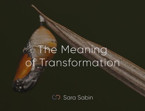 The Meaning of Transformation